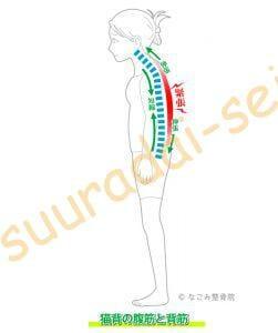 背筋の緊張(整骨院)